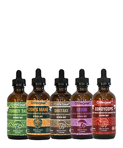 Life Cykel Liquid Extracts Bundle