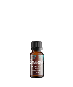 Little Innoscents Spearmint Essential Oil 10ml