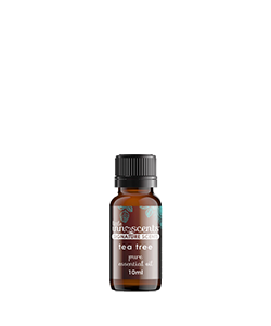 Little Innoscents Tea Tree Essential Oil 10ml